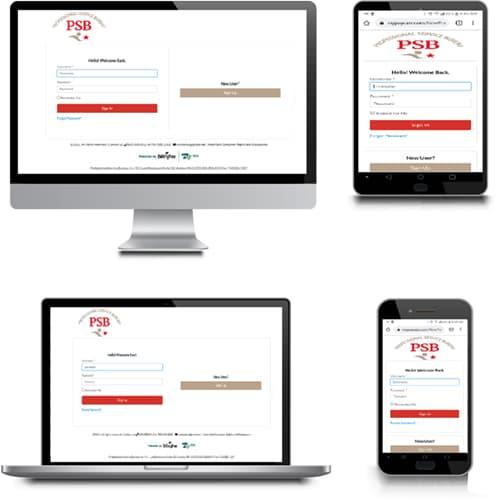 The PSB*MARS online portal